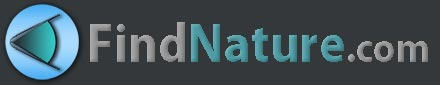 Logo de FindNature.com